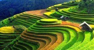 voyage organisé au vietnam