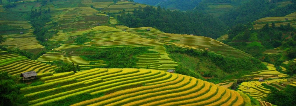 Voyage Vietnam, Visa Vietnam