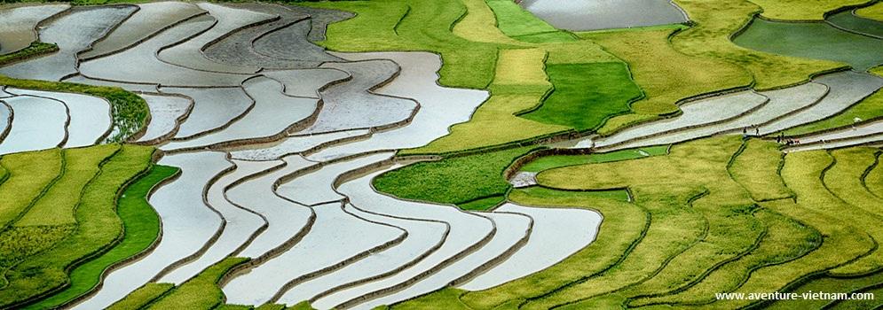 Agence de voyage locale Vietnam.