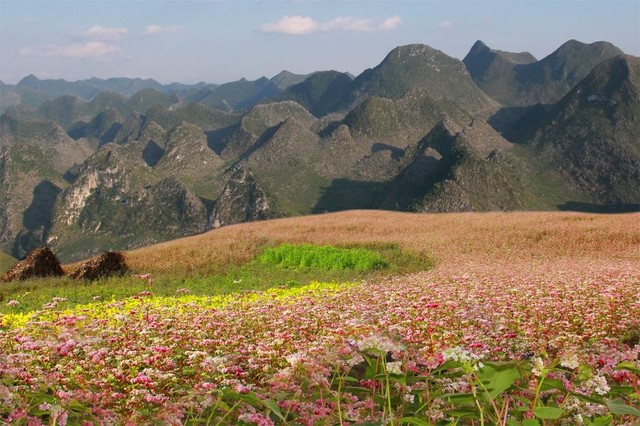 hagiang